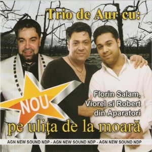 Download Gratuit Trio de Aur (2013) - Pe ulita de la moara [Album]